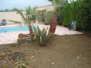 Création jardin Mazaudier Bernard Arbres