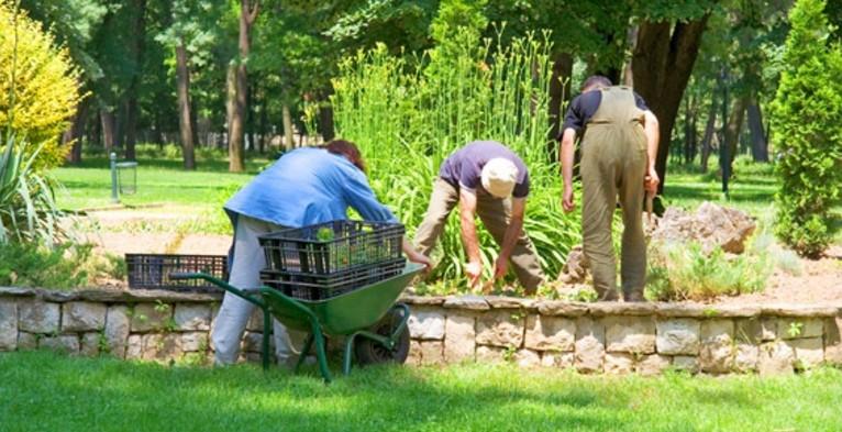 Paysage bernard mazaudier jardin for Entretien jardin emploi